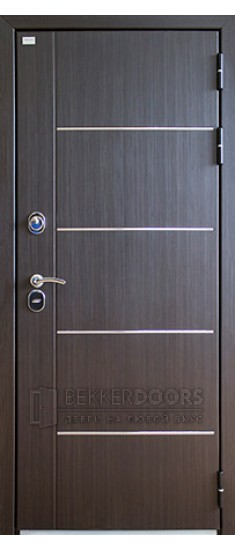Дверь Аргус Горизонт-100 Венге с молдингами (Внешняя)
