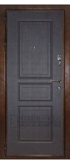 Дверь Аргус Рубеж-1